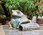 Bronze frog statue at Bellevue Botanical Gardens - crop