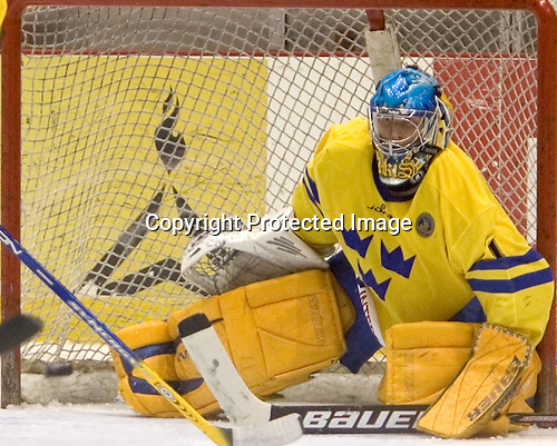 Magnus Akerlund (HV 71 - Carolina Hurricanes)  The US Blue team lost to Sweden 3-2 in a shootout as part of the 2005 Summer Hockey Challenge at the National Junior (U-20) Evaluation Camp in the 1980 rink at Lake Placid, NY on Saturday, August 13, 2005.