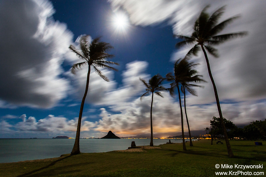 Long exposure of Mokoli'i (aka Chinaman Hat) with palm trees under a full moon at night,  Kualoa Regional Park, Oahu