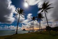 Long exposure of Mokoli'i (aka Chinaman Hat) with palm trees under a full moon at night,  Kualoa Regional Park, Oahu