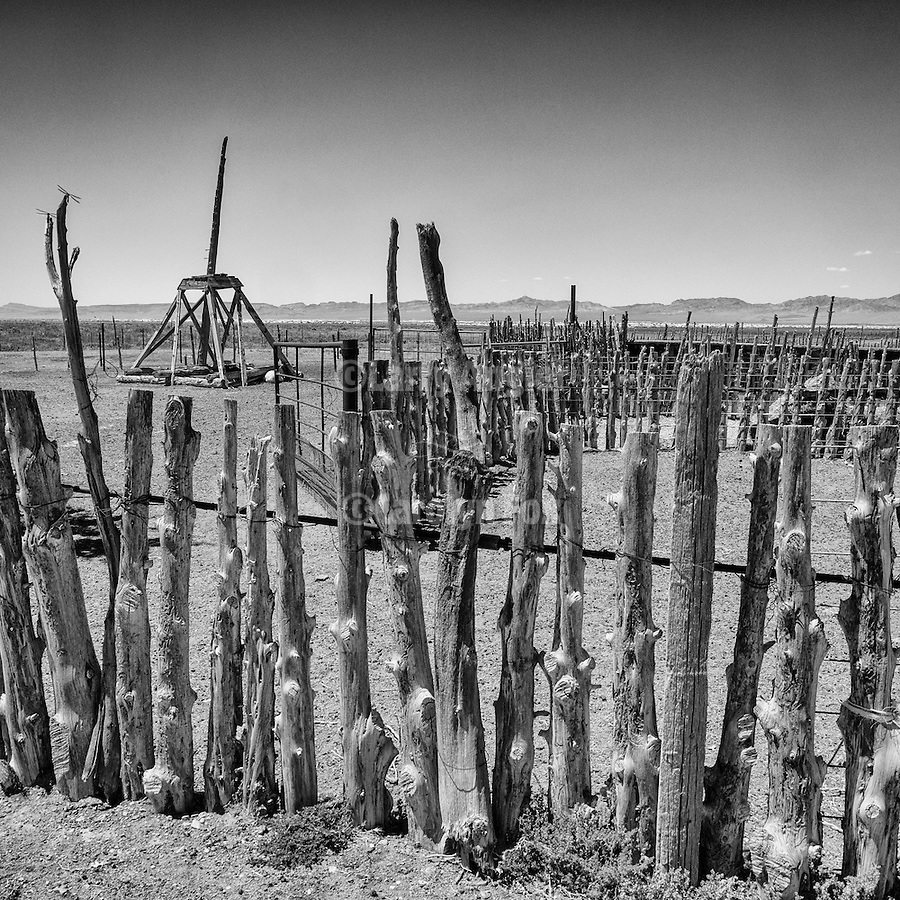 Wooden stake corral, Railroad Valley, Nye County, Calif.
