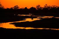 The Khwai River at dawn