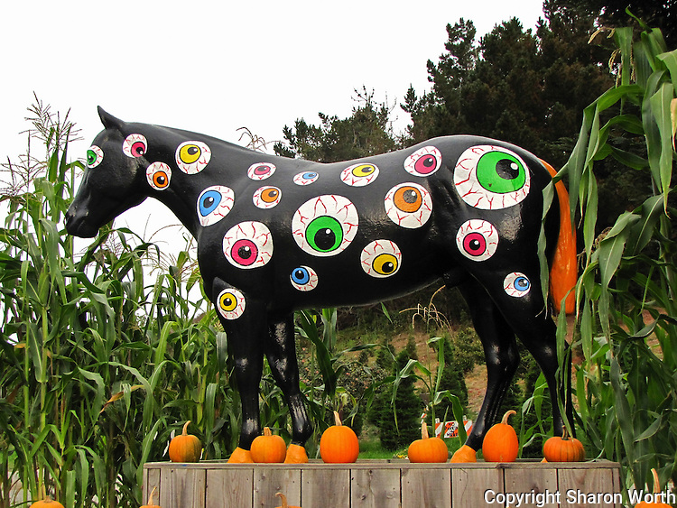Sporting a coat of blood-shot eyes, Old Paint celebrates Halloween 2011 at Lemo's Farm in Half Moon Bay, California.