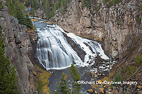 67545-09712 Gibbon Falls at Yellowstone National Park, WY