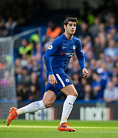 Alvaro Morata of Chelsea during the Premier League match between Chelsea and Watford at Stamford Bridge, London, England on 21 October 2017. Photo by Andy Rowland.