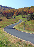 A scenic road with fall colors in Albemarle County, VA. Photo/Andrew Shurtleff