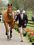 LEXINGTON, KY - APRIL 27: #1 Fernhill Fugitive and rider Phillip Dutton jog before the vets and grand jury during the first horse inspection for the Rolex Three Day Event on Wednesday April 27, 2016 in Lexington, Kentucky. (Photo by Candice Chavez/Eclipse Sportswire/Getty Images)