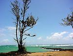 Breathtaking Scenic Photography of Hawaii, Kauai, Maui, Oahu, the Hawaiian Islands, ocean, mountains, views, beaches, sunsets, tropical sunset Breathtaking Scenic Photography Hawaii<br /> Breathtaking Scenic Photography of Hawaii, Kauai, Maui, Oahu, the Hawaiian Islands, ocean, mountains, views, beaches, sunsets, tropical