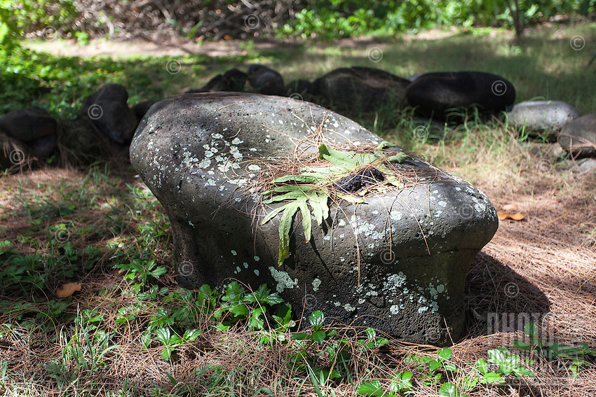 Sacred stone shrine in Waipi'o Valley, Big Island.