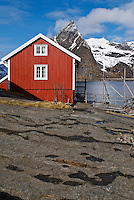 Traditional red Rorbu fishermans cabin overlooks fjord and mountains of lofoten islands, Sakrisoy, Lofoten islands, Norway