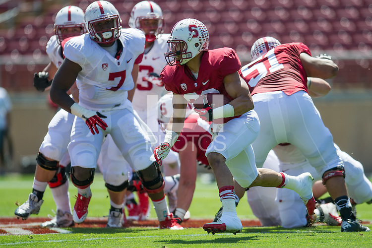 STANFORD, CA - April 12, 2014: The Stanford Cardinal Spring Football game at Stanford Stadium in Stanford, CA.