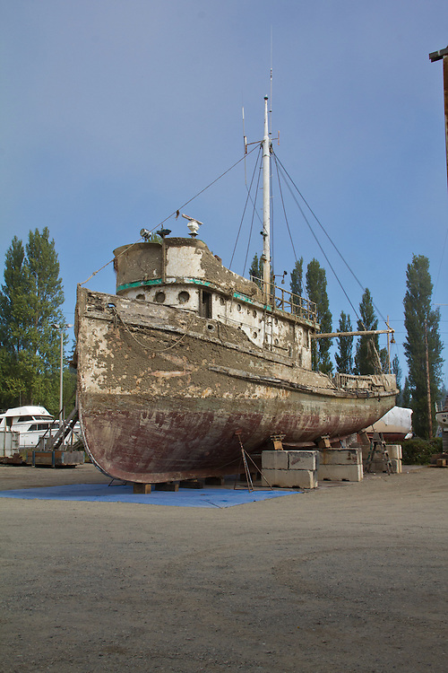The Western Flyer, author John Steinbeck and Ed Ricketts chartered this boat to explore the Gulf of California (Sea of Cortez) in 1940 resulting in the book: The Log of the Sea of Cortez. The boat sank recently and has been hauled out at the Port of Port Townsend, Puget Sound, Washington State.