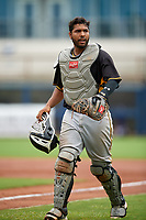 Bradenton Maruaders catcher Raul Hernandez (29) during a Florida State League game against the Charlotte Stone Crabs on August 7, 2019 at Charlotte Sports Park in Port Charlotte, Florida.  Charlotte defeated Bradenton 3-2 in the second game of a doubleheader.  (Mike Janes/Four Seam Images)