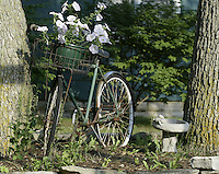 An old bike with flowers in the basket sits in front of a cottage Saturday, July 1, 2006, in Lakeside, Ohio.