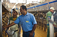 Inhauma_MG, Brasil...Gestao no campo na Fazenda Sao Joao. A fazenda e a terceira maior produtora de leite do Brasil, com 15 milhoes de litros por ano. A primeira em MG. Tem 1.170 hecatres, e capacidade de armazenagem para 22 mil toneladas de alimentos para o gado em Inhauma, Minas Gerais. Na foto ordenha mecanica...Field management in the Sao Joao Farm. The farm and the third largest producer of milk in Brazil, with 15 million gallons per year. The first in MG. 1170 has hecatres, and storage capacity to 22 million tons of food for cattle in Inhauma, Minas Gerais. In this photo mechanical milking...Foto: JOAO MARCOS ROSA / NITRO...