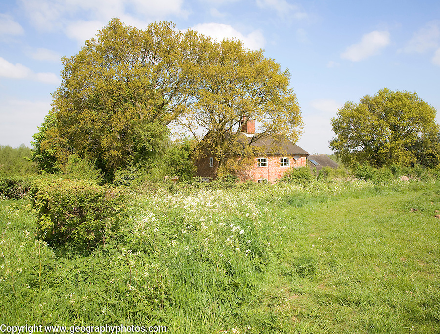 Spring seasonal landscape with detached  country cottage, Rendlesham, Suffolk, England