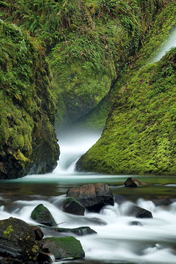 Bridal Veil Creek, Bridal Veil Falls State Park, Columbia River Gorge National Scenic Area, Oregon, USA