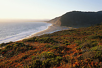 California, Santa Cruz County, Pacific Coast Highway near Santa Cruz