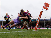 Harlequins' Alex Dombrandt scores his sides first try<br /> <br /> Photographer Bob Bradford/CameraSport<br /> <br /> Premiership Rugby Cup Semi Final - Exeter Chiefs v Harlequins - Sunday 2nd February 2020 - Sandy Park - Exeter<br /> <br /> World Copyright © 2018 CameraSport. All rights reserved. 43 Linden Ave. Countesthorpe. Leicester. England. LE8 5PG - Tel: +44 (0) 116 277 4147 - admin@camerasport.com - www.camerasport.com