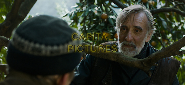 Lembit Ulfsak<br /> in Tangerines (2013) <br /> (Mandariinid)<br /> *Filmstill - Editorial Use Only*<br /> CAP/FB<br /> Image supplied by Capital Pictures