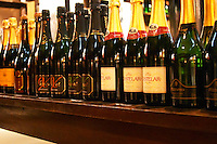 A selection of Uruguayan sparkling wine: Pizzorno, Castelar and others. Montevideo, Uruguay, South America Uruguay wine production institute Instituto Nacional de Vitivinicultura INAVI