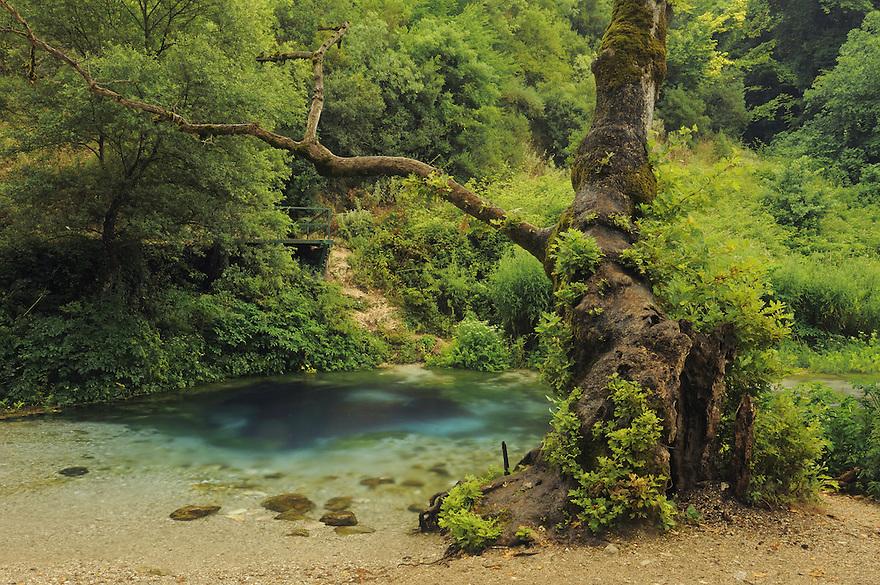 """The spring """"Syri i Kalter"""" (The Blue Eye). Albania June 2009"""