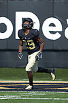 DeAndre' Delaney (29) of the Wake Forest Demon Deacons warms-up prior to the game against the Notre Dame Fighting Irish at BB&T Field on September 22, 2018 in Winston-Salem, North Carolina. The Fighting Irish defeated the Demon Deacons 56-27. (Brian Westerholt/Sports On Film)