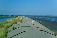 Eider-Deich, Deich an der Eider im Bereich der Mündung, Nordsee, Schleswig-Holstein