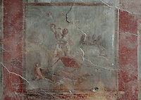 Fresco of Laocoon killed by the snake, from the East ala of the Casa del Menandro, or House of Menander, Pompeii, Italy. This room is painted in the Fourth Style of Roman wall painting, c. 60–79 AD, a complex and Baroque style. Also known as the House of the Silverware, this is one of the largest and most elegant houses in Pompeii, belonging to the Poppei family and built in the 3rd century BC. Pompeii is a Roman town which was destroyed and buried under 4-6 m of volcanic ash in the eruption of Mount Vesuvius in 79 AD. Buildings and artefacts were preserved in the ash and have been excavated and restored. Pompeii is listed as a UNESCO World Heritage Site. Picture by Manuel Cohen
