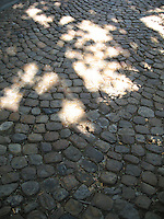 Sun filters onto an old stone street