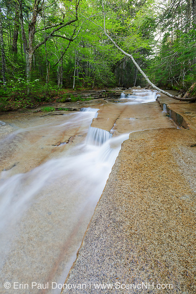 Walker Cascades during the spring months. These cascades are located along Walker Brook in Franconia Notch State Park of the White Mountain National Forest, New Hampshire.