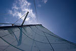 Raised Sail and sky
