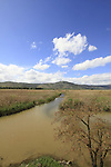 Israel, The Hula Nature reserve in the Upper Galilee