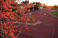Fall leaves, at the stadium and track, general campus photos of Occidental College, Los Angeles, California, 2008. (Photo by Marc Campos, College Photographer, Copyright Occidental College 2008)