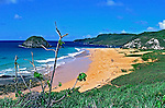 Praia do Leão no Arquipélago de Fernando de Noronha. Foto de Juca Martins.