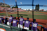 Kansas State vs. Oregon State at NCAA Super Regional in Corvallis, Oregon on June 8, 2013.  Photo by Steve Dipaola