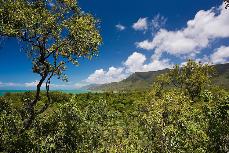 View of Thala Beach and the Coral Sea from the Thala Beach Lodge, Port Douglas, Australia