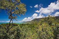 View of Thala Beach and the Coral Sea from the Thala Beach Lodge, Port Douglas, Australia