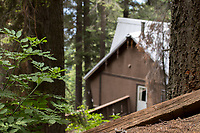 The forest surrounds the chalet, making you feel as though you're out in the wilderness, but with all the comforts of home.