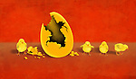 Illustrative image of newly hatched chicks by eggshell representing profit