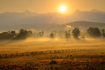 Idaho, East Central, Lemhi County, Salmon. Sunrays illuminate a misty pasture in the Salmon River Valley at dawn in summer.