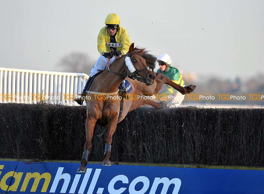 Got Attitude ridden by Andrew Tinkler takes the last in the William Hill - Home of Betting Handicap Chase Cl3 2m4f110y  at Kempton Park Racecourse, Sunbury-on-Thames, Middlesex - 14/01/2012 - MANDATORY CREDIT: Martin Dalton/TGSPHOTO - Self billing applies where appropriate - 0845 094 6026 - contact@tgsphoto.co.uk - NO UNPAID USE.