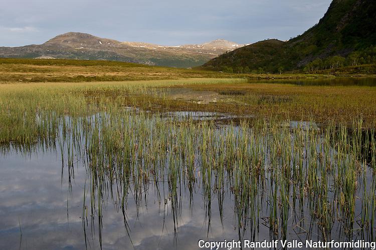 Olderbuktvatnan, Seiland nasjonalpark. ---- Lake in Seiland National park