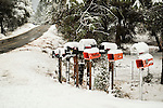 A rare late autumn snowfall covers the Sierra Foothill town of Jackson, Calif.<br /> <br /> Butte Mt. Rd. Newspaper and mailboxes