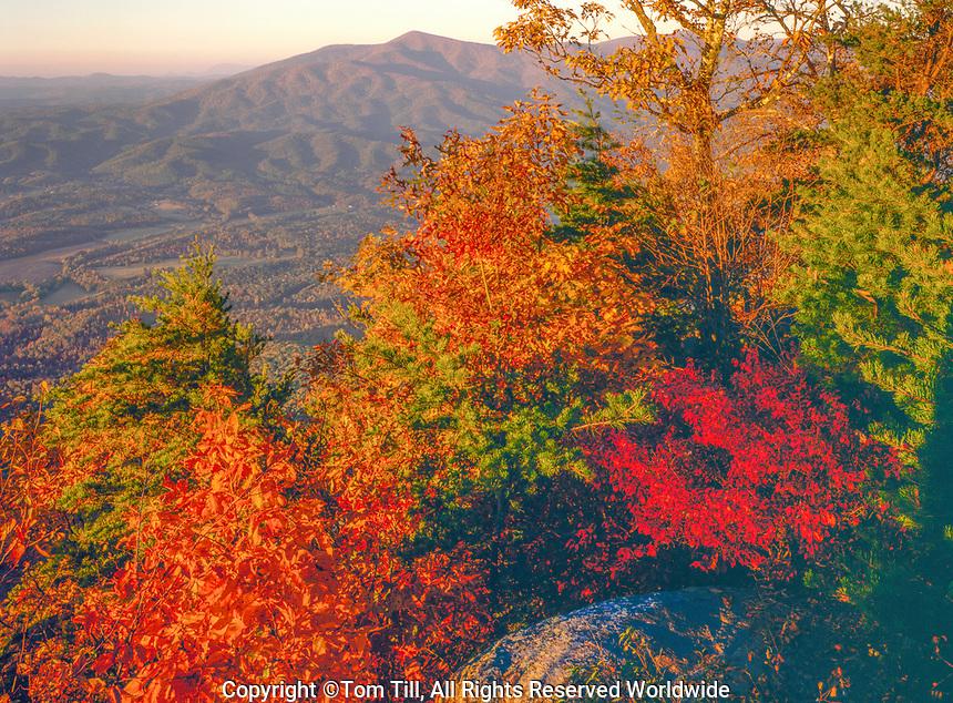 Autumn on Fort Mountain, Georgia, Souhtern Appalachian Mountains