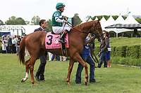 HOT SPRINGS, AR - April 14: Stellar Wind #3 with jockey Victor Espinoza aboard walks in the infield paddock prior to the Apple Blossom Handicap at Oaklawn Park on April 14, 2017 in Hot Springs, AR. (Photo by Ciara Bowen/Eclipse Sportswire/Getty Images)
