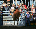 Cody Kiser competes in the bareback bronc riding event at the Reno Rodeo in Reno, Nev., on Thursday, June 27, 2013.<br /> Photo by Cathleen Allison