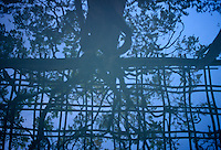 AVAILABLE FROM JEFF AS A FINE ART PRINT.<br /> <br /> AVAILABLE FROM JEFF FOR LICENSING<br /> <br /> Reflection of Tree and Gazebo in Japanese Garden, Brooklyn Botanic Garden, Brooklyn, New York City, New York State, USA