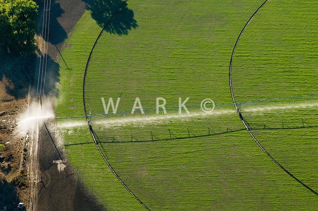 irrigation with sprinkler