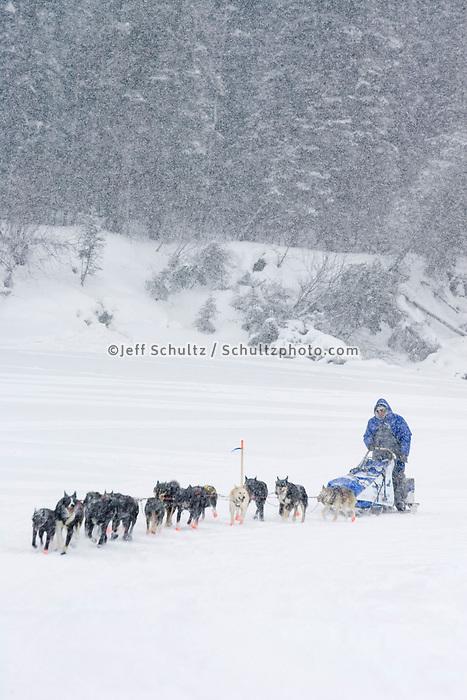 John Bakers sled dog team arriving @ Nikolai Chkpt in snowstorm 2006 Iditarod Alaska interior Winter